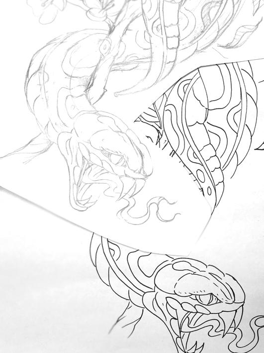 snake4.jpg